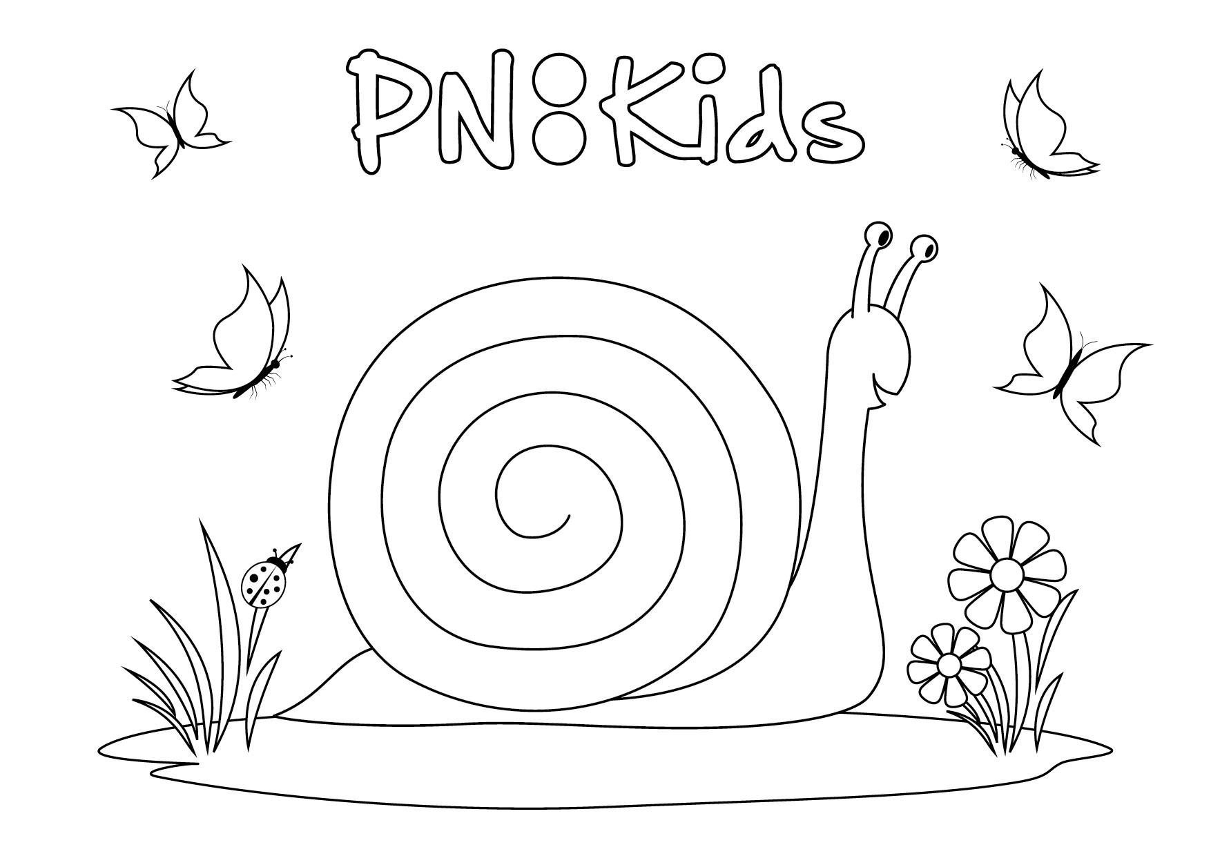 play u0026 learn pnkidspnkids